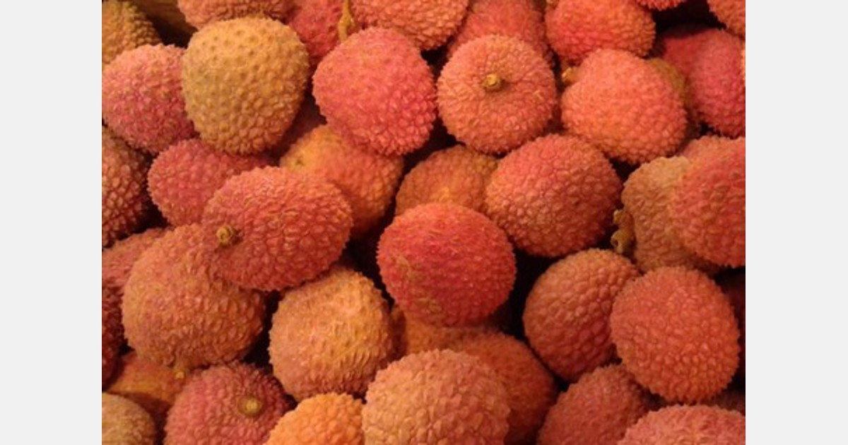 Marciume post-raccolta su litchi commercializzato in Italia
